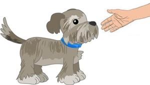 greydoghand