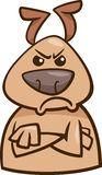grumpydog